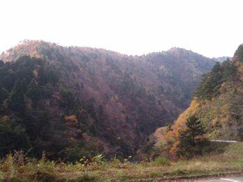 2009-11-15 10.21