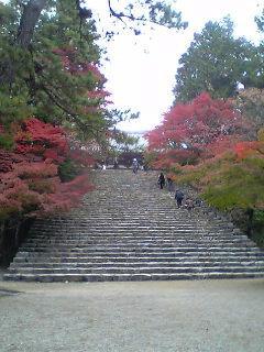 紅葉の神護寺